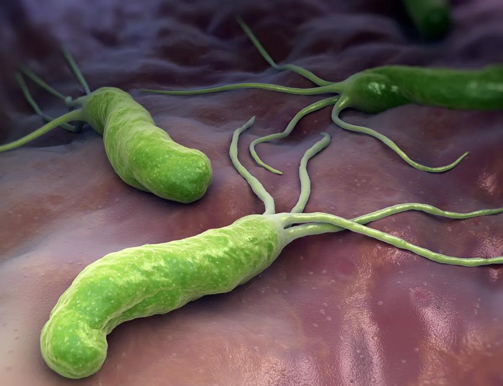 helio bakterija simptomi